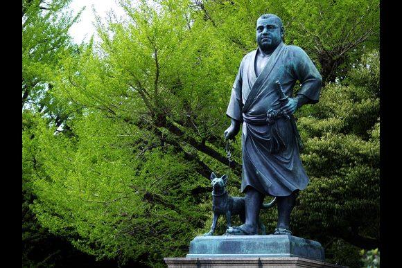 Go on a sakura cherry blossoms tour around Ueno! - 4