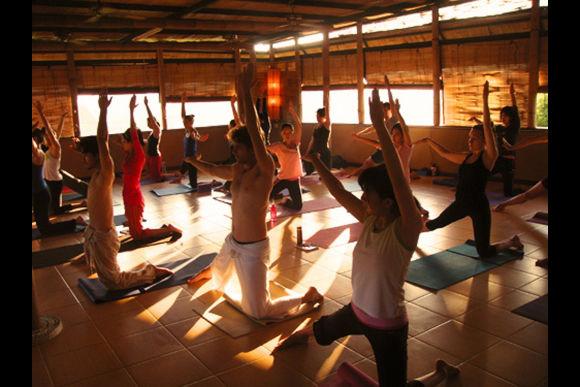 Yoga Class and Eco Stay in Canggu Bali - 0