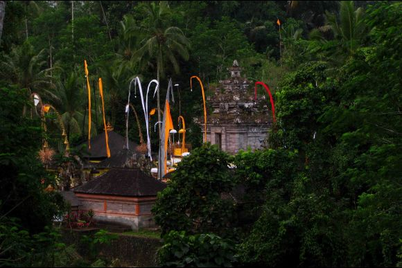 Bali Hidden Temples and Cultural Heritage Tour - 2
