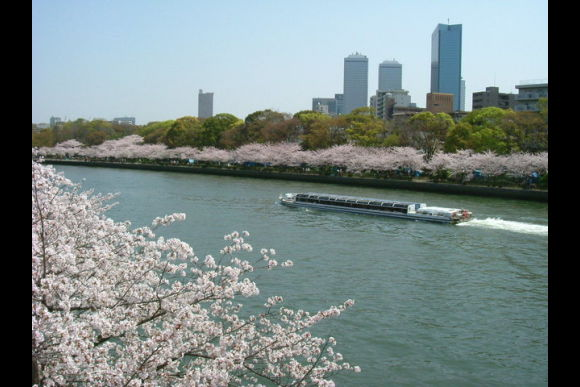 Receive Business Consultation & Legal Advice in Osaka - 0
