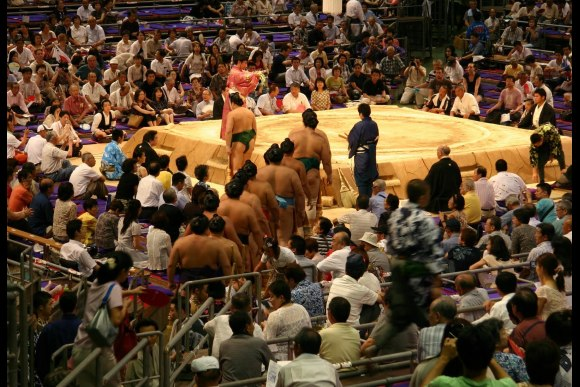 Attend Nagoya's Sumo Tournament with a guide - 0