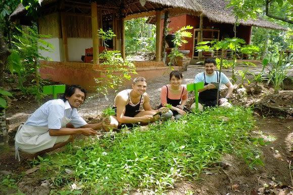 Balinese Cooking Class at an Organic Farm in Scenic Sidemen - 1