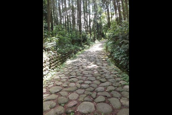 Walk the stone-paved path of Old Tokaido & Ruins of Suwahara - 0