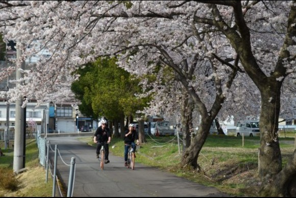 Join Snow Monkey Walking & Cycling Day Tour in Nagano - 5