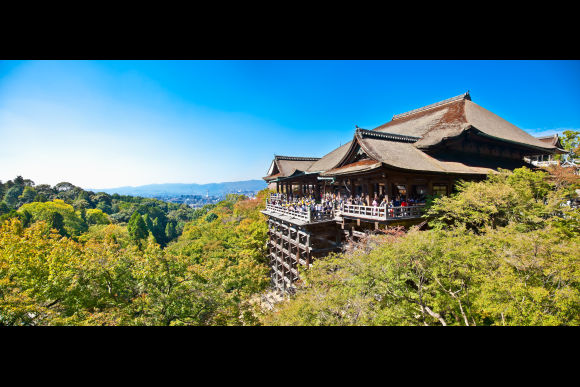 Explore the historical cities, Kyoto and Nara in 1 day! - 0