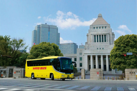 Panoramic Tokyo Bus Tour with Lunch and Bay Cruise - 4