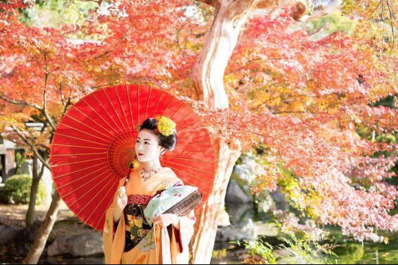 Book an exclusive experience in Tea house with a maiko,Kyoto - 3
