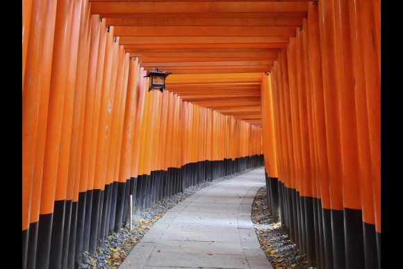 Customise and embark on a Private Half Day Tour in Kansai - 3