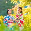 Gero Onsen Gassho-mura – GV
