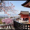 Kyoto Kanko Navi-GV