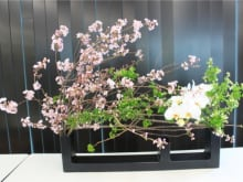 Ikebana: the Art of Japanese Flower Arrangement