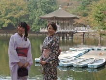 Enjoy walking in Nara in Kimono with a certified local guide
