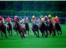 Watch Horse Racing in Kyoto, Japan!
