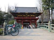 Enjoy a Deep Tokyo Cycling Tour