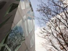 Join a Harajuku and Omotesando Architecture Tour