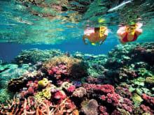 85折优惠!一日浮潜之旅!从巴厘岛到蓝梦岛