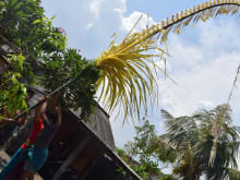 Learn to Make a Penjor like a Local