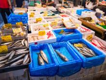 Eat, Drink and Enjoy Tsukiji Market Tour!