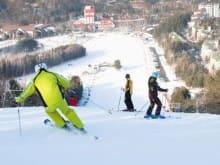 Yongpyong Resort 1-Day Ski Tour from Seoul