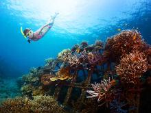 25% OFF Plongée avec tuba à Nusa Lembongan depuis Bali