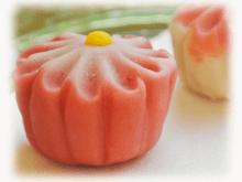 Try Nerikiri Wagashi (Japanese sweet) making & Matcha, Tokyo