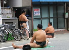 Sumo Training and Culture, Hidden Gems of Tokyo