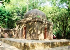 Explore Lodi Gardens and Picnic in Hauz Khas