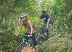 Cycle down a volcano and through the rice fields of Bali