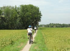 Bike through Saigon's countryside