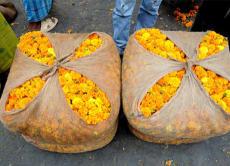 デリーの失われた花市場を探してウォーキングツアー