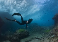 Introduction to Freediving: Fusion Snorkeller