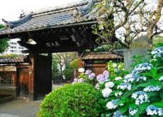 Ueno, Yanaka, Sendagi Heritage Walk