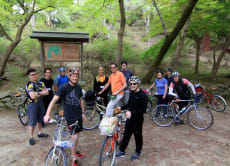 Mountain Biking in the Forests of Kyoto + BBQ Party