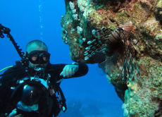 Bali Scuba Diving at the Majestic Tulamben Liberty Wreck