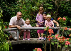15日間、家族旅行と一緒にバリ島を旅する
