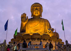 Escape to Lantau Island: Big Buddha & Tai O Fishing Village