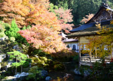 Trek in Nature's Beauty & Visit a Peaceful Temple Garden