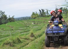 Ride an ATV through the Ricefields & Visit Butterfly Park