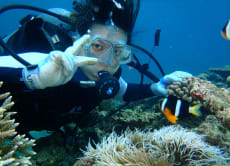 Try an Introduction Diving Course! - in Ishigaki Island