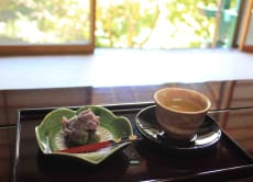 Experience Meditation & the Japanese Tea Ceremony in Atami