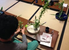 Experience Ikebana, a Flower Arrangement Class!