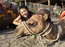 Enjoy a Camel Ride in Bali