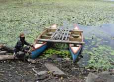 Canoe and Trek through Bali's Jungle and Lake in Bedugul