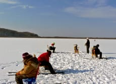Ice fishing for smelt in Kushiro Marsh