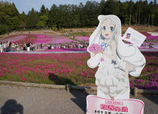 "Visit the real spots from anime ""Anohana"" & ""Yamanomusume"""
