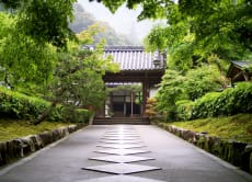 Kyoto Fun: Personalised Private Tour