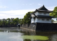 Visit the remains of Edo-jo Castle and Taste Matcha!