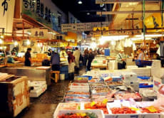 Explore Tsukiji Food Market in a Fun Local Tour!