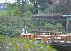Stroll like a real Tokyo local in Aoyama/Omotesando, Tokyo