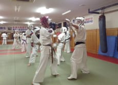 Discover Karate in a 60 minute lesson near Yanagawa, Fukuoka